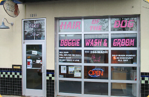 Welcome to hair of the dog doggie wash and groom portland oregon hair of the dog wash and groom portland oregon solutioingenieria Gallery
